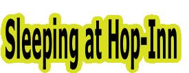 Sleeping at Hop-Inn
